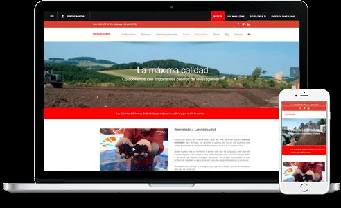 Diseño web para Lombrimadrid